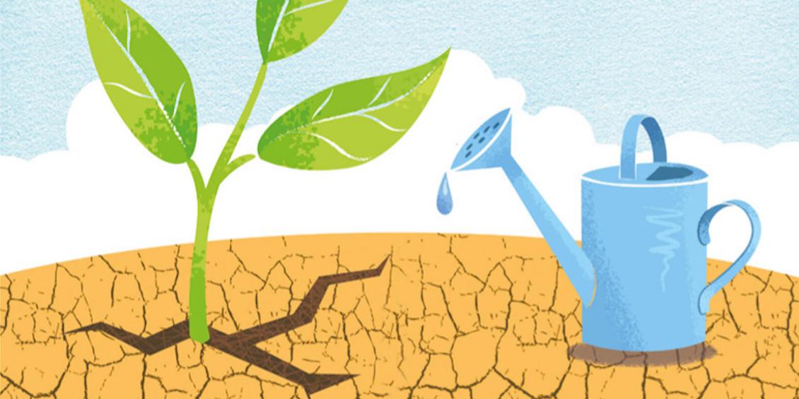 Pflanze und Gießkanne auf trockenem Boden